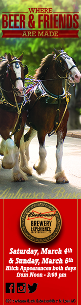 Budweiser Clydesdales 160×600