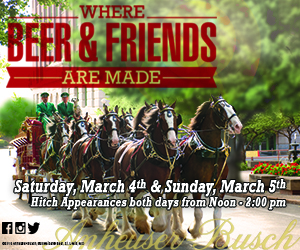 Budweiser Clydesdales 300×250